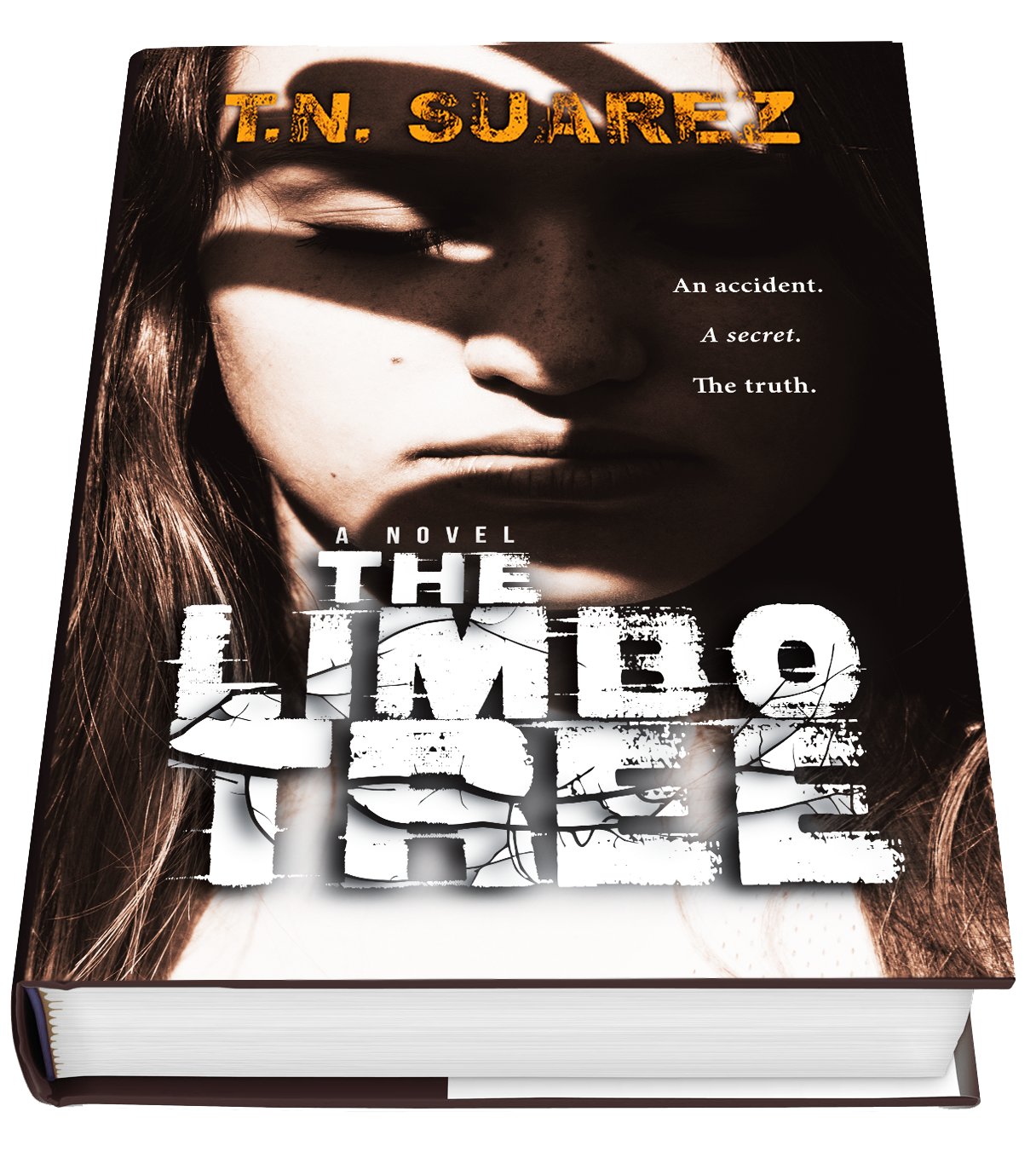 limbotree_bookcover_perspective2